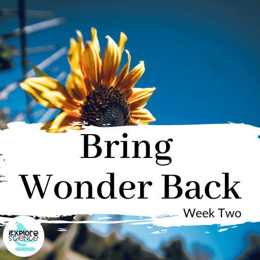 Shifting Ownership To Student Learners (Bring Wonder Back II)