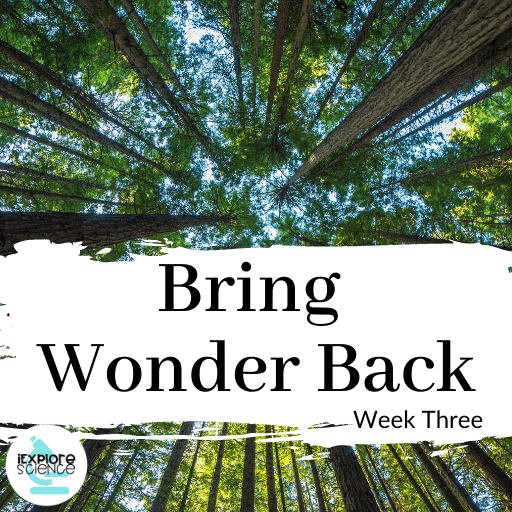 Turning Our Students Into Scientists (Bring Wonder Back III)