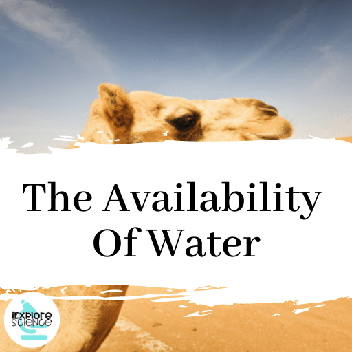 Understanding The Availability Of Water
