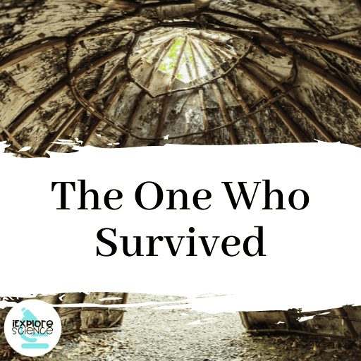 The One Who Survived (Anchor)