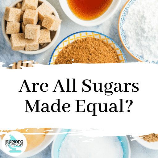 Are All Sugars Made Equal? (Anchor)
