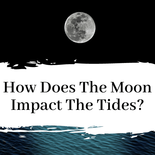 How Does The Moon Impact Tides?