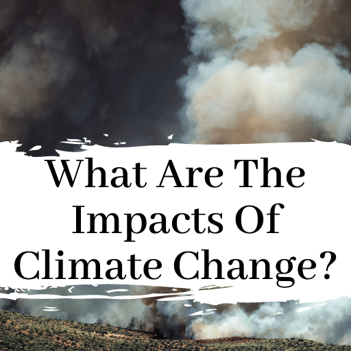 How Is Climate Change Impacting Our World?
